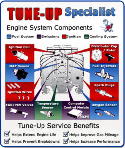 Dunan Tune-Up